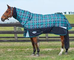 top horse christmas gifts naylors blog