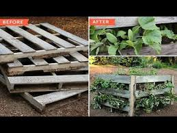 Raised Garden Beds From Pallets - how to make raised beds from pallets youtube