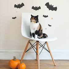 animated halloween cat cat gifs find u0026 share on giphy