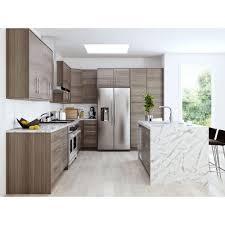 Home Decorators Cheerful Home Decorators Cabinets Monaco Platinum Kitchen