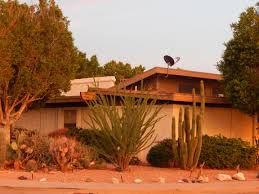 discover tempe laguna estates near dwight park