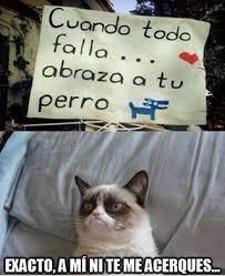 Funny Memes Espaã Ol - im磧genes de memes en espa祓ol http www fotosbonitaseincreibles