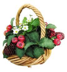 fruit flower basket free photo basket fruit flowers free image on pixabay 2777502