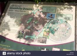 Cornwall England Map by Information Panel About National Nature Reserve Goonhilly Downs