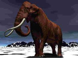 ice age bible woolly mammoth creation