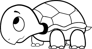 coloring pages turtles funycoloring
