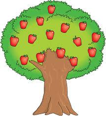 apple tree cycle animation ted ed