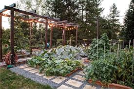 home vegetable garden pictures landscape traditional with garden