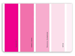 what colors go good with pink what colors go with pink interior design