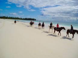 freeport beach horseback riding jamaica cruise excursions