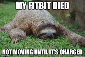 Sloth Fitness Meme - fitbit and food corps fitness