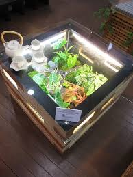 attractive terrarium coffee table diy terrarium coffee table close