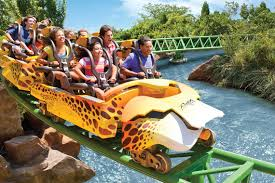 busch gardens family vacation packages seaworld orlando u0026 busch gardens tampa combo fun card undercover