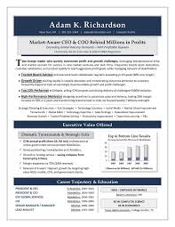 Best Online Resume Service by Best 20 Resume Writer Ideas On Pinterest How To Make Resume
