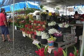 Hilo Flowers - hilo u0027s best restaurants restaurants in big island