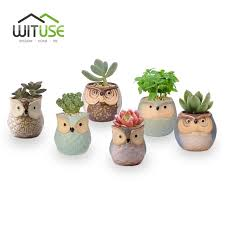 wituse 6pcs set owl ceramic flower pot small indoor flower clay