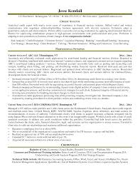 Resume Sample Data Analyst by Programmer Analyst Resume Sample Sql Data Analyst Resume Sample