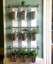 fresh indoor herb gardens kits 8387