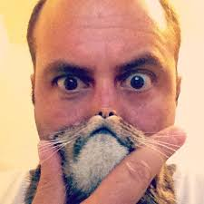 Cat Beard Meme - cat beard latest bizarre photo trend