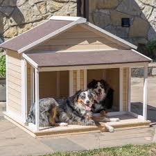 Dog House Designs for Two Dogs