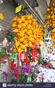 new year decoration dh flower market mong kok hong kong new year decoration