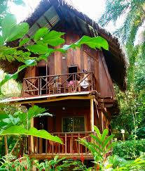 red frog bungalows waterways surf adventures surf travel surf