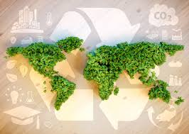 why is our environment important
