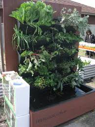 vertical aquaponics in west backyard diy systems that photo on