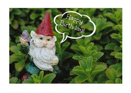 garden gnome happy birthday photo note cards set of ten