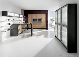 kitchen design ideas org pictures of kitchens modern light wood kitchen cabinets page 3
