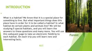 mrs schorsch u0027s 3 rd grade habitat webquest introductiontask