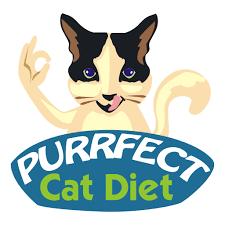 best wet cat food u0026 expert cat product reviews purrfect cat diet