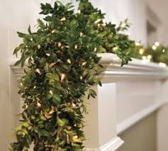 56 best ideas for using boxwood wreaths and garland images on