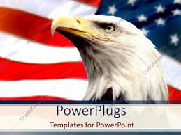 Eagle American Flag Powerpoint Template Bald Eagle With American Flag White