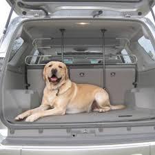 porta cani per auto cani in auto ecco le regole da seguire e cosa prevede la legge