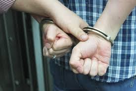 bail bureau bail matters corrupt practices investigation bureau
