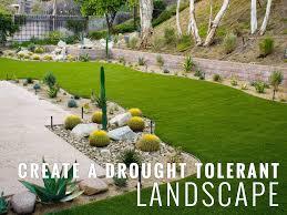 create a drought tolerant landscape turf pros solution