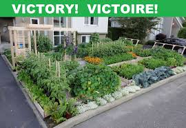 front yard gardens wonderful fold fallow and plough some people