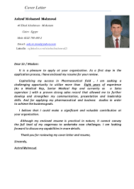 Attached Is My Resume For Your Review Ashraf Mahmoud