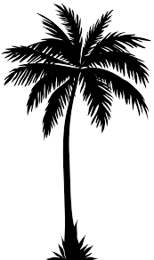 palm tree silhouette png clip art image ideas for the house palm tree silhouette png clip art image