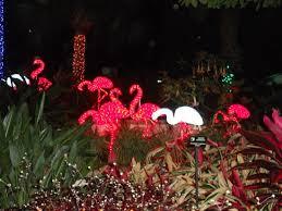 Largo Botanical Garden Lights Picture Of Florida Botanical Gardens Largo Tripadvisor