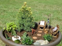 plain fairy garden plants throughout inspiration decorating