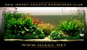 Aquascape Nj March 23rd 2013