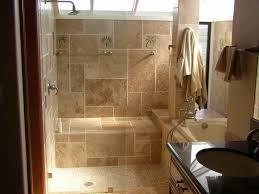 Shower Ideas For Bathrooms Stylish Bathroom Design Ideas Walk In Shower Alluring Walk In