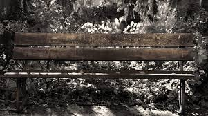 Landscape Timber Bench Images Landscape Nature Forest Outdoor Snow Winter Images With