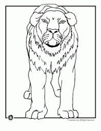 lion coloring pages animal jr