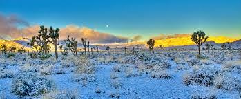 snow in desert the best desert 2017