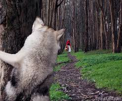 and the big bad wolf the big bad wolf hides
