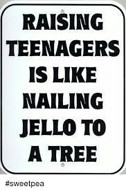 Teenagers Meme - 25 best memes about raising teenagers raising teenagers memes