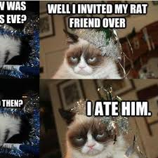 New Grumpy Cat Meme - what happened on grumpy cat s party on new years eve funny pic
